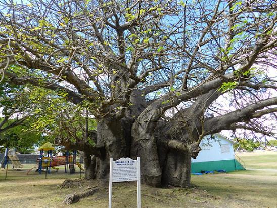 Barbados Queens Park
