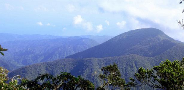Blue Mountains en Jamaica