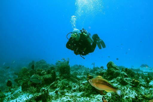 turismo  Cozumel